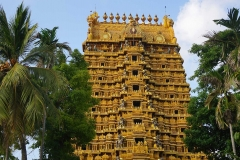 Temple - Nallur Kovil temple